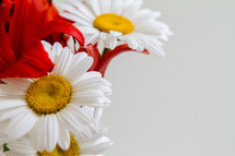 red lilies and white daisies