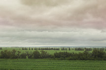 a gloomy field and cloud in nature