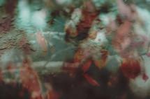moody rainy autumn background