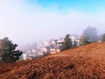 fog over a neighborhood