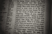 you will be saved - Bible verse