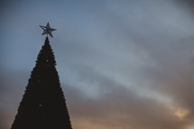 star on the top of an outdoor Christmas tree