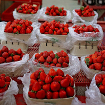 pints of strawberries