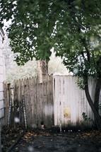 hole cut into a fence and a tree