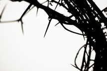 silhouette of a crown of thorns.