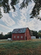 a horse grazing in front of a red barn