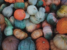 a pile of gourds and pumpkins