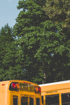 School Bus and trees