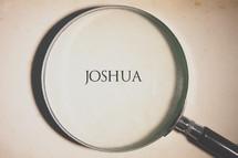 magnifying glass over Joshua