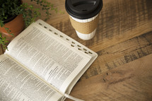 house plant, open Bible, and coffee cup