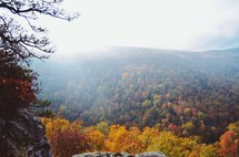 fog over a mountain range