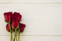red long stem roses against a white background