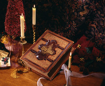 a Christmas scene and the Holy Bible