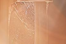 spider web between railings