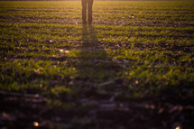 legs of a man standing in a field projecting a shadow