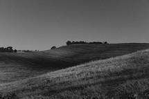 freshly cut hillside