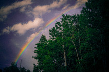 a rainbow in a gray sky and trees
