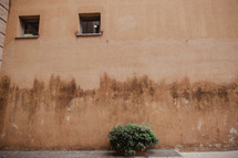 stained wall on the side of a building in Rome