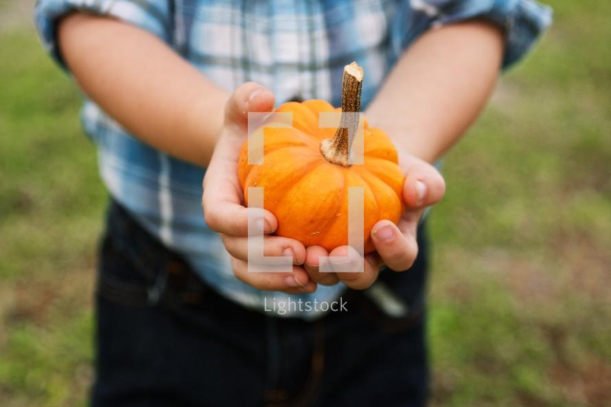 Boy holding a pumpkin