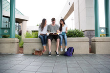 college students on campus sitting studying together.