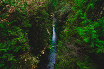 waterfall in a jungle