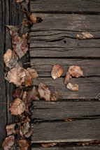 fall leaves on wooden boards