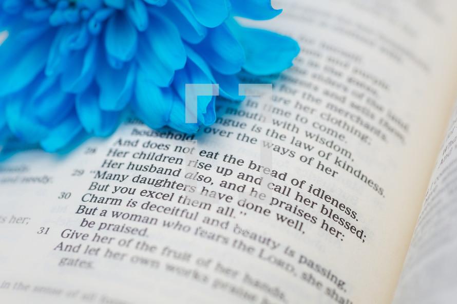 Blue flower on an open Bible.