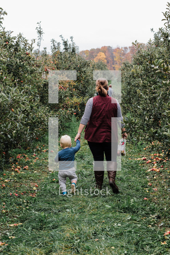 mother and toddler son walking in an apple orchard