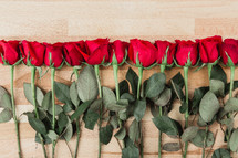 row of red long stem roses