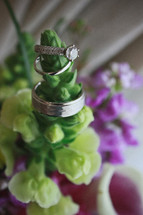wedding rings on a bouquet