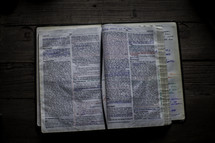 taking notes on the pages of a Bible