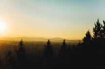 sunrise behind the tree line