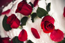 red roses in cake frosting