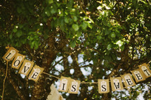 """Love Is Sweet"" sign hanging from trees"
