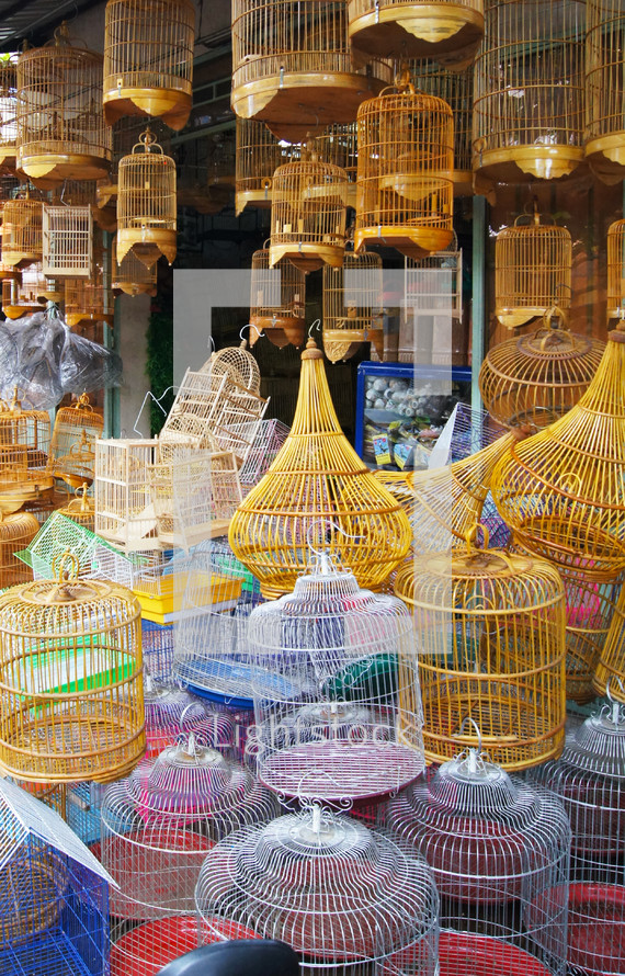 Different types of colored bird cages