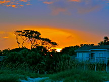 A house surrounded by sand dunes and trees and a sunset.