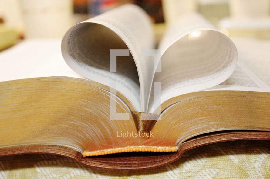 pages of a Bible folded in a heart