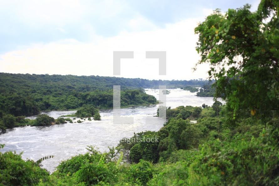 River through the jungle