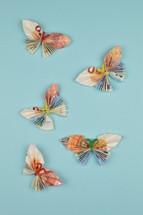 Euro butterflies