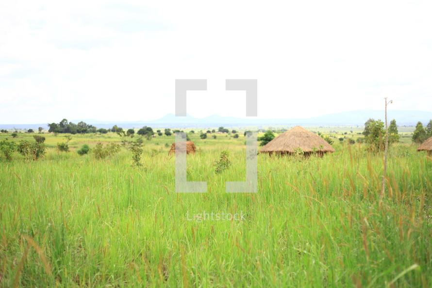 Straw huts in grass field