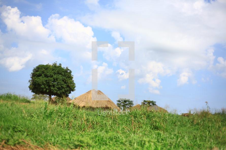 Straw huts in green field