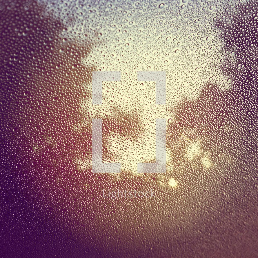 dew on a window