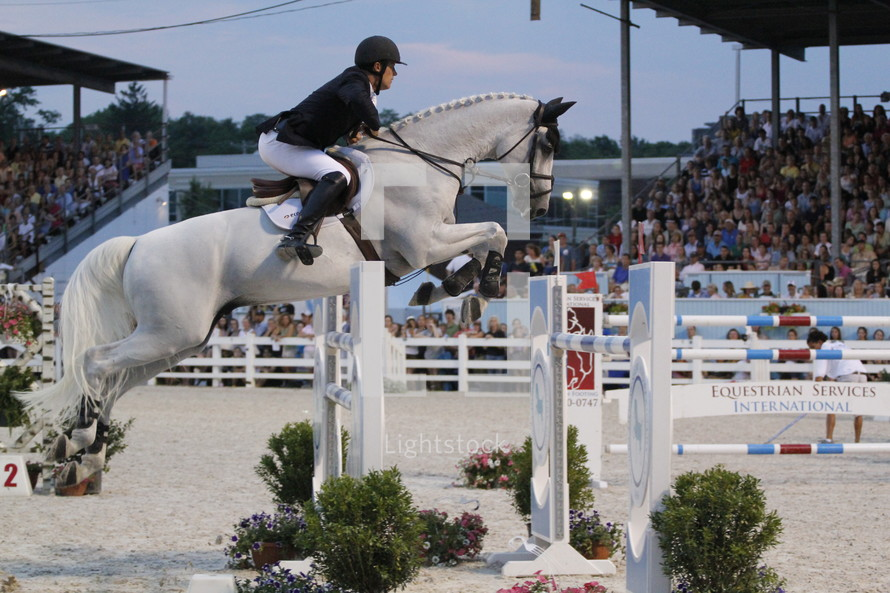 horse jumping in an equestrian show