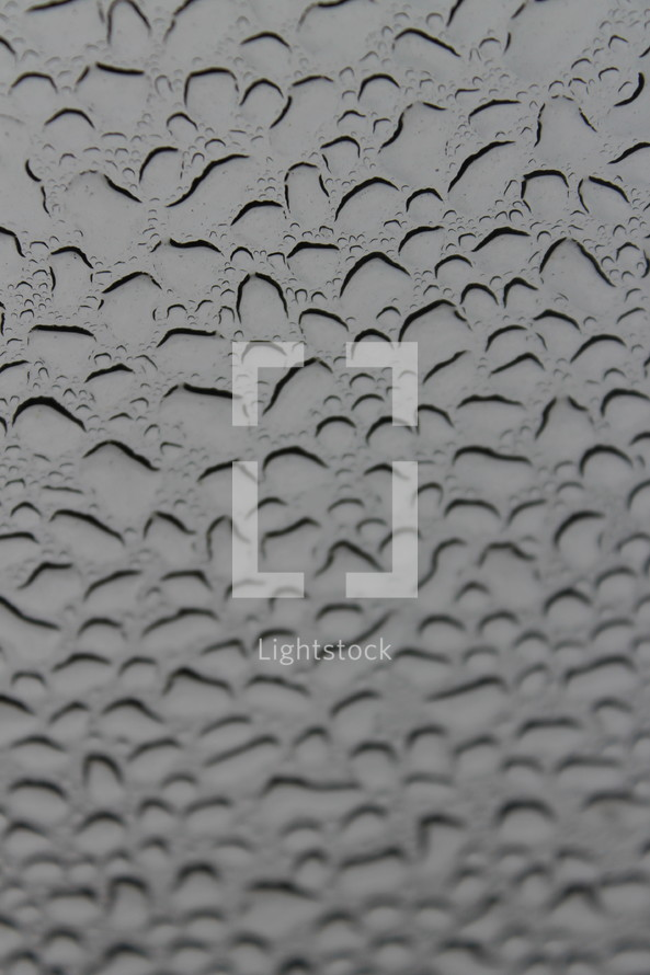 raindrops on a window