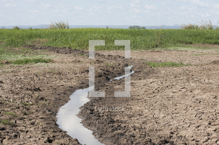 Stream of water running through cracked mud field with grass and cloudy sky in the background.