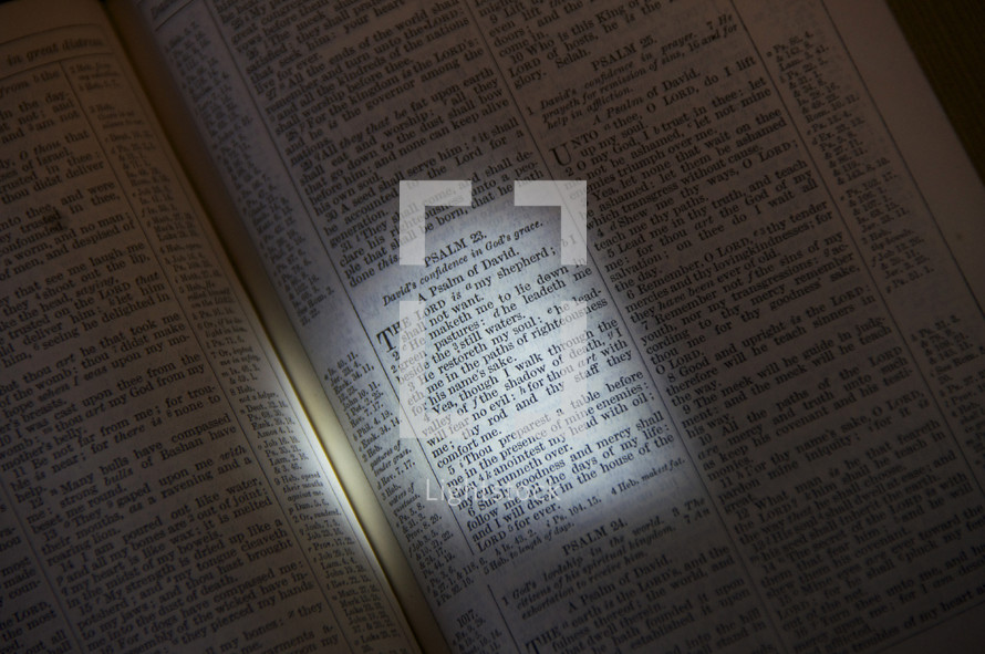 Open Bible in the book of Psalms