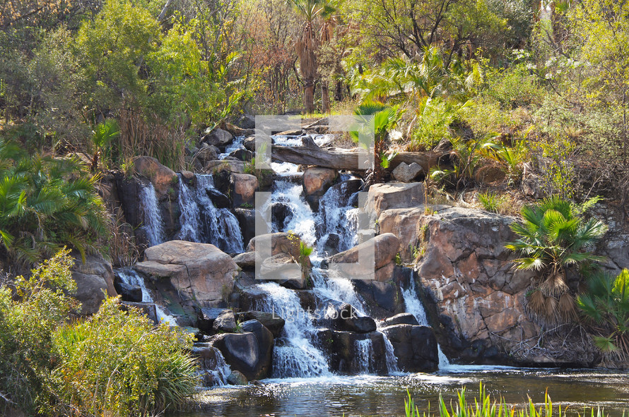 rocky stream in jungle or forest - waterfall