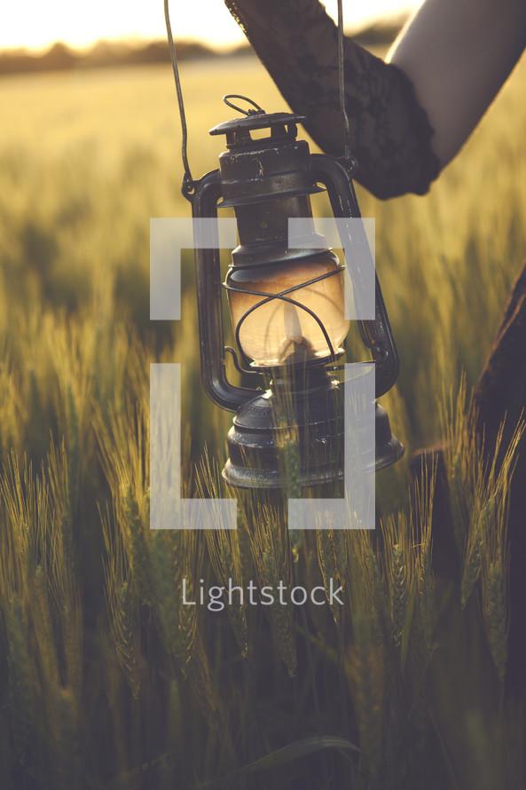 lantern in a wheat field