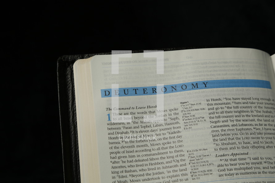 Open Bible in the book of Deuteronomy