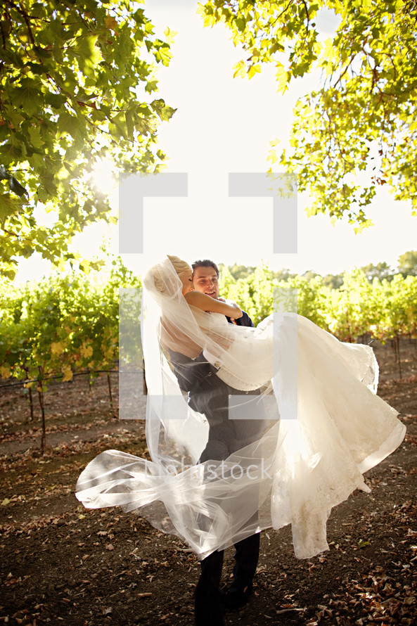 A groom carrying a bride in a vineyard wedding day sunset napa valley man wife
